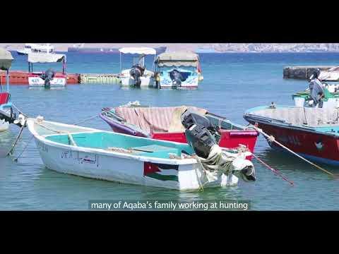 مشروع المخزون السمكي في العقبة