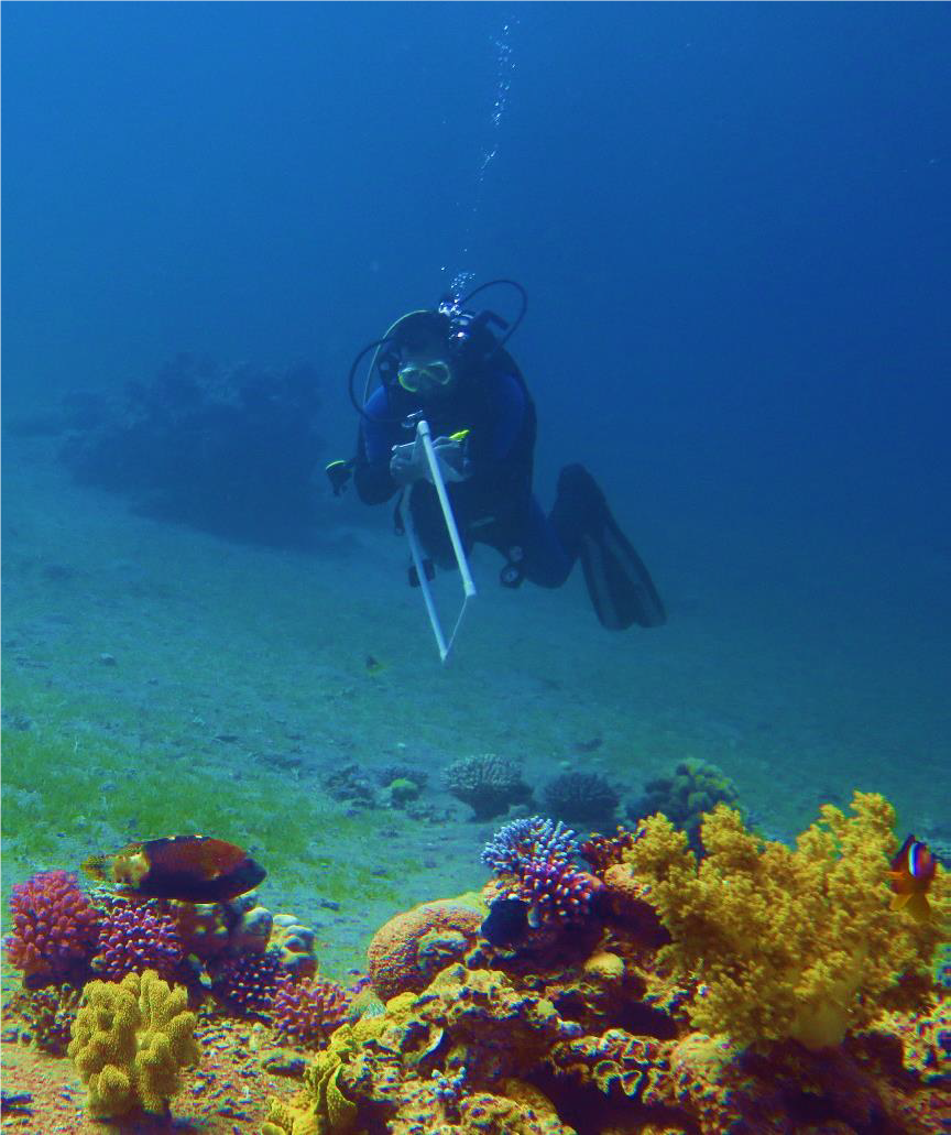 Marine Habitat Mapping and Nagoya Protocol at Aqaba